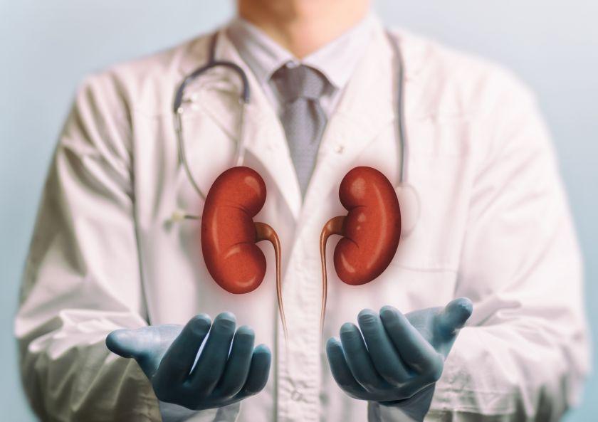Hepatitu C sirgusio donoro inkstai transplantuoti šia liga jau persirgusiems žmonėms